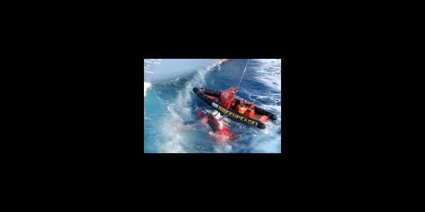 17 pays demandent au Japon d'abandonner sa chasse à la baleine - La Libre