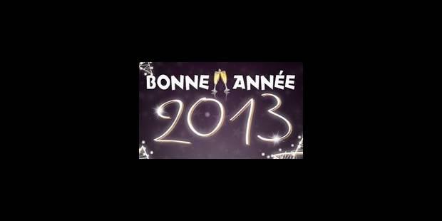 LaLibre.be vous souhaite une excellente année 2013! - La Libre