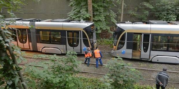 Des canards à l'origine d'une collision de trams - La Libre