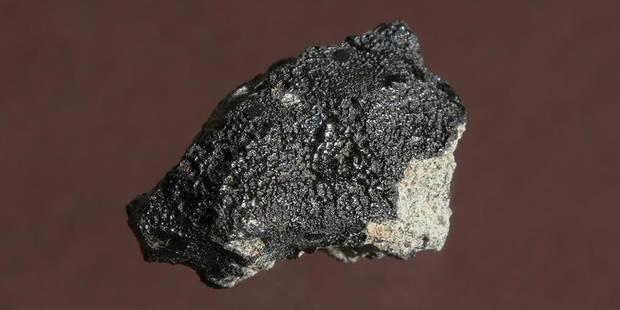 Une petite météorite relance le débat sur la vie sur Mars - La Libre