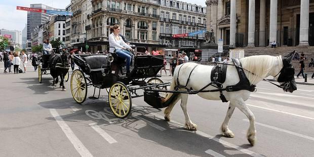 Bruxelles : au premier jour du piétonnier - La Libre