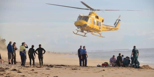 Seconde attaque mortelle de requin en une semaine en Australie - La Libre