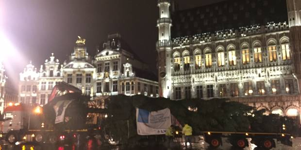 Le sapin de Noël est arrivé sur la Grand-Place (PHOTOS + VIDEO) - La Libre