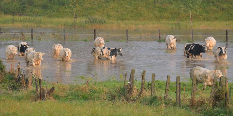 La Belgique en 2050 (1/3): Tous réquisitionnés pour lutter contre les inondations - La Libre