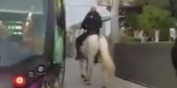 Il monte dans le tramway avec son cheval — Montpellier
