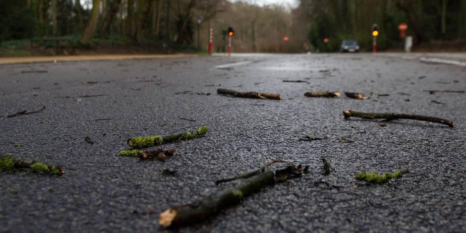 Le bilan s'alourdit à 8 morts en Allemagne — Tempête