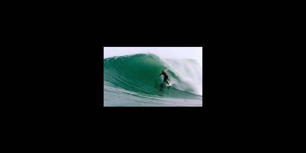 Le retour de «Mr Surf» - La Libre