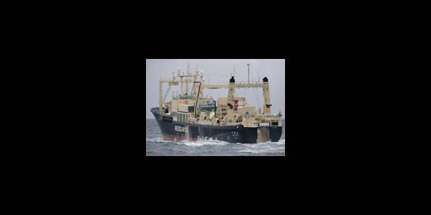 Greenpeace dit avoir chassé les baleiniers - La Libre