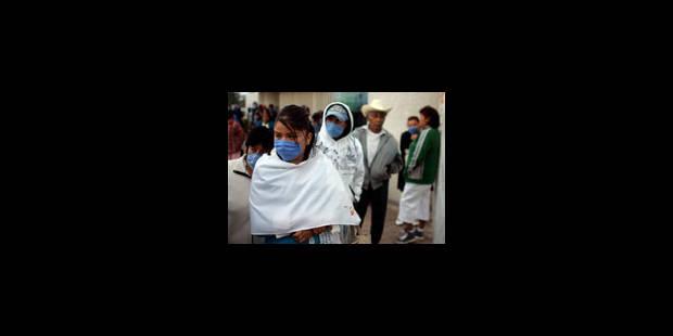 Grippe porcine: Stopper la contagion - La Libre