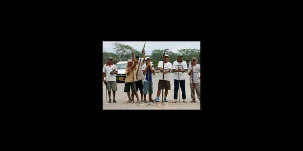 Amazonie : les députés réviseront les décrets - La Libre