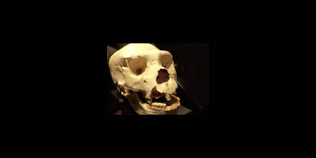 Les premiers Européens étaient cannibales