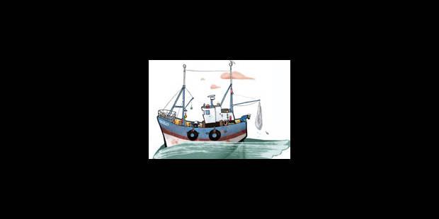 Le poisson qui rétrécit - La Libre