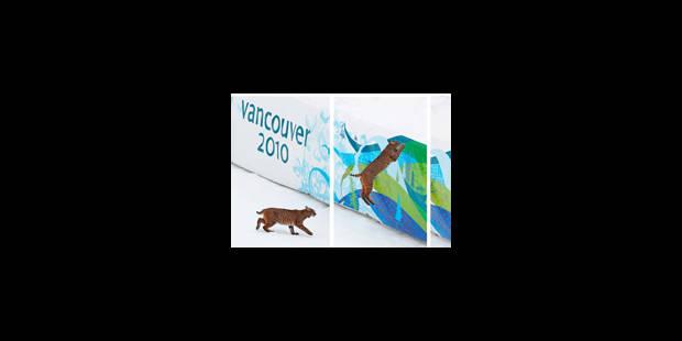 Images des Jeux: du lynx sauvage aux larmes de Rochette - La Libre