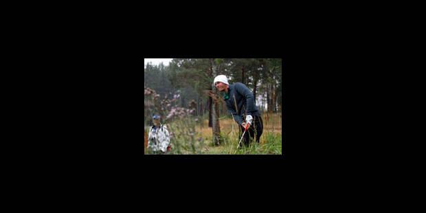 Colsaerts charge en Suède