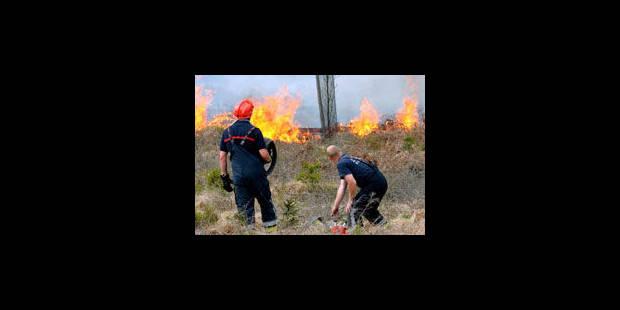 Nouvelles reprises de feu dans les Fagnes