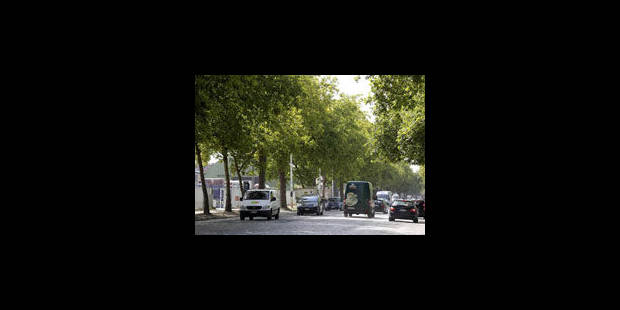 Avenue du Port: le gouvernement Picqué temporise