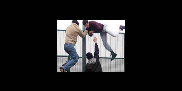 Combien de demandes d'asile ont été acceptées en Belgique l'an dernier ?