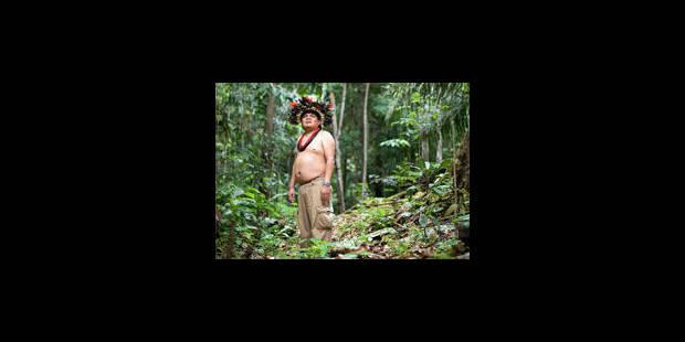 La lutte contre la déforestation passe par Google