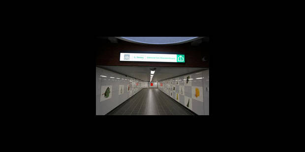 Arts dans le métro: des sommes affolantes sont dépensées - La Libre