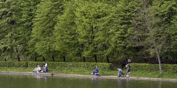 Un enfant de 2 ans se noie accidentellement dans un étang de Westouter - La Libre