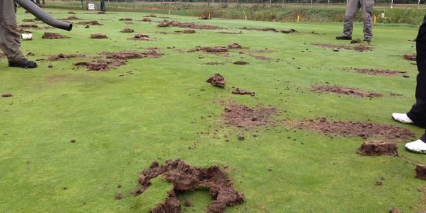 Deux golfs bruxellois vandalisés cette nuit - La Libre