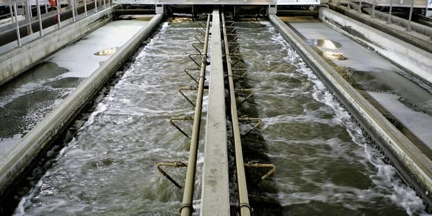 La Belgique sanctionnée pour sa négligence dans l'assainissement des eaux usées? - La Libre
