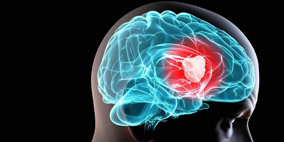 Les cerveaux féminin et masculin sont-ils si différents?