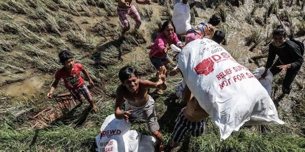 Haiyan: la Croix-Rouge de Belgique a récolté 1,25 millions d'euros - La Libre