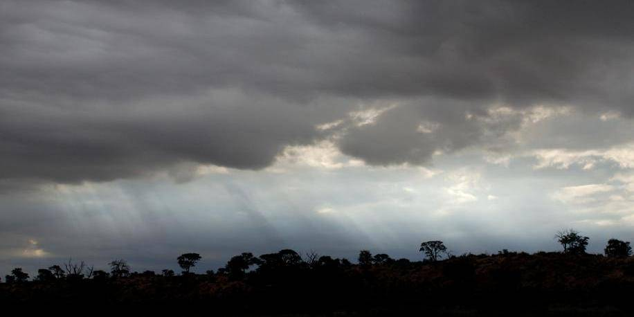 Kgalagadi Transfrontier Park, désert du Kalahari, Afrique du Sud