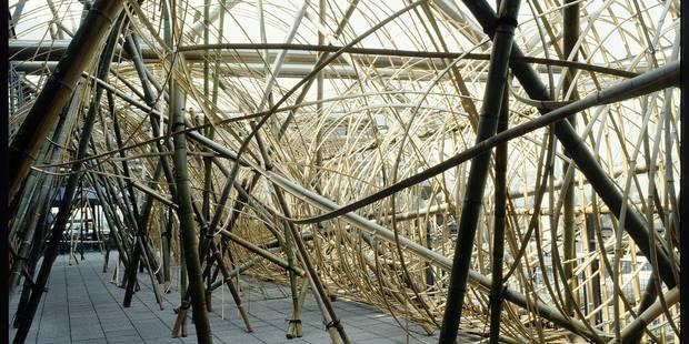 """Pompidou: Hommage aux """"Magiciens de la Terre"""" - La Libre"""