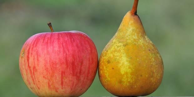 Embargo russe: les E-U donnent la priorité aux producteurs de pommes et poires européens - La Libre