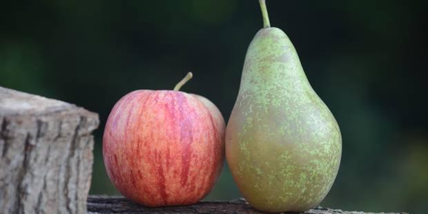 Le prix de vente des pommes et des poires est en chute libre - La Libre