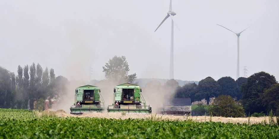 Comment les éoliennes ont augmenté la rentabilité des terres agricoles - La Libre