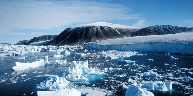 Les mastodontes ont disparu de l'Arctique avant l'arrivée des premiers humains - La Libre
