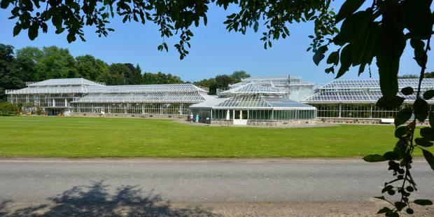Le gouvernement flamand investit 1,9 million dans le jardin botanique de Meise - La Libre