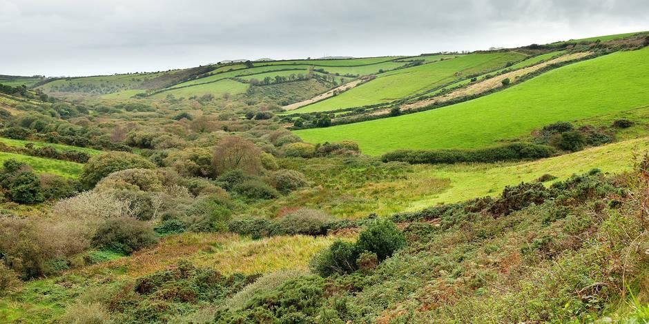 Lush Green Fields On A Landscape Of Rolling Hills; Ireland