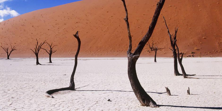 El Nino, quand le climat fait craindre le pire pour l'Afrique