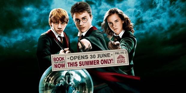 Exposition Harry Potter : la magie prend ses quartiers au Palais 2 - La Libre