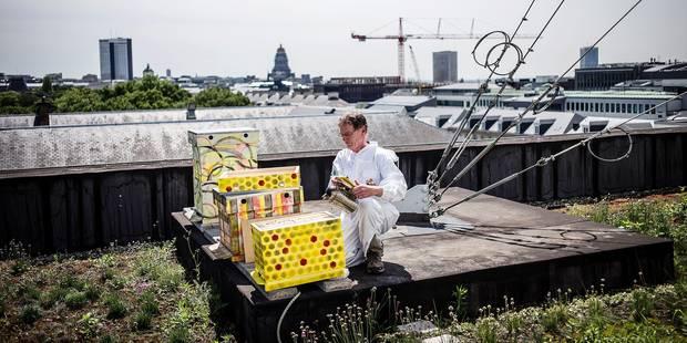 20160610- BELGIQUE, BRUXELLES: Apiculteur sur le toit du Senat. Bruxelles, le 9 juin 2016. PHOTO OLIVIER PAPEGNIES / COLLECTIF HUMA