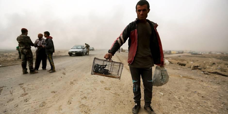 """Quitter Mossoul? La tragédie des déplacés """"pris entre deux feux"""""""