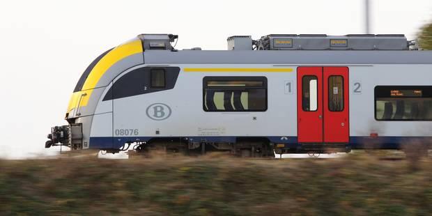 La circulation des trains perturbée par les intempéries - La Libre