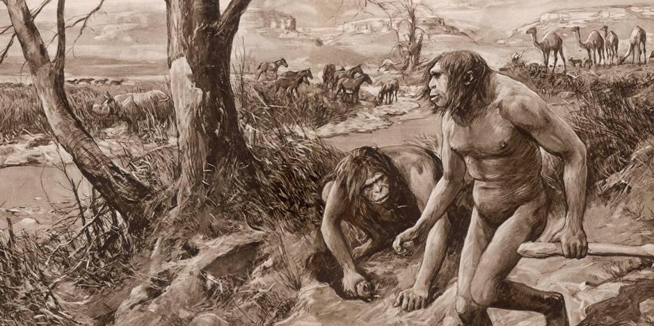 L'Homme se considère comme une espèce supérieure mais ne serait-il pas un animal comme les autres?