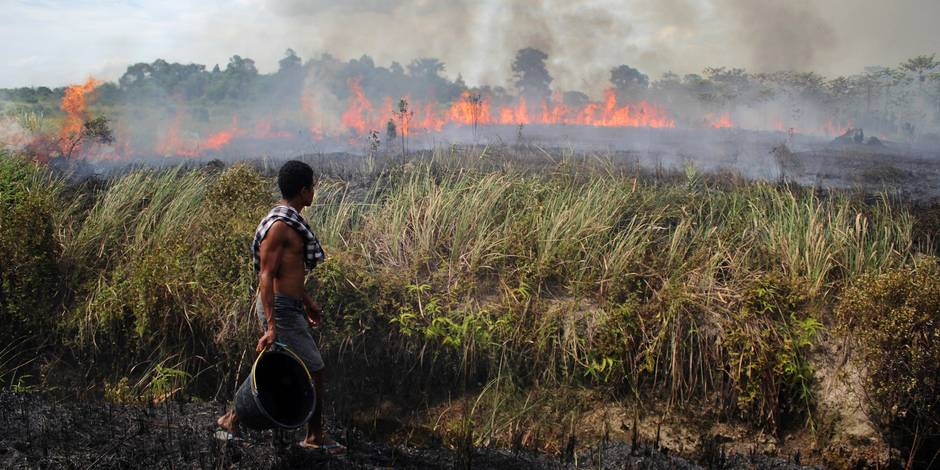 Peatland Fires In Kampar Regency