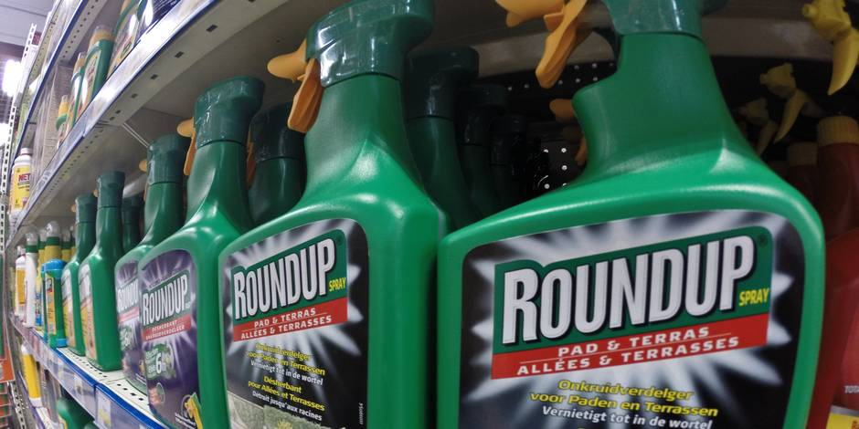 Deux eurodéputés demandent une commission d'enquête sur Monsanto