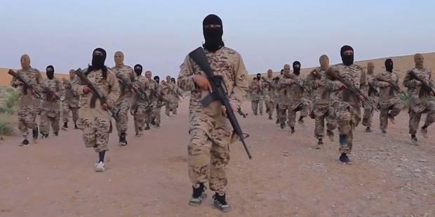 Geler les avoirs des Belges partis en Syrie: une soi-disant arme contre le terrorisme (OPINION) - La Libre
