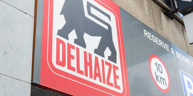 Seize nouvelles enseignes Delhaize verront le jour - La Libre