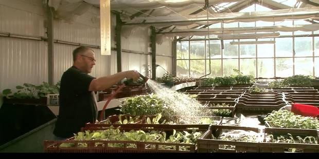 """A la ferme de Moyembrie, les détenus """"réapprennent à vivre"""" - La Libre"""