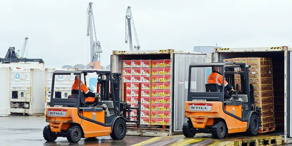 Port Anvers industrie travail chomage emploi containers marchandise alimentaire fruits BNFW dockers transport bananes