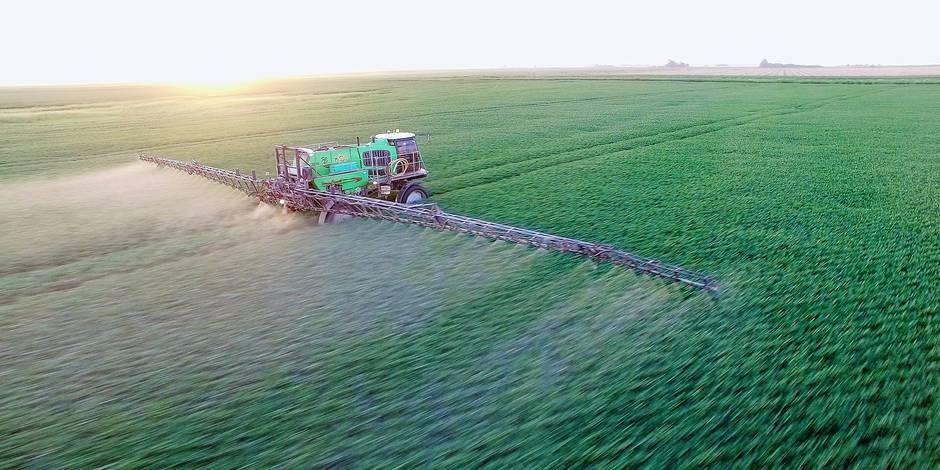 Monsanto accusé de donner la mort