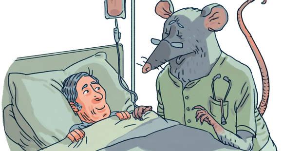 L'expérimentation animale reste indispensable (OPINION) - La Libre